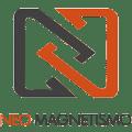 Neomagnetismo
